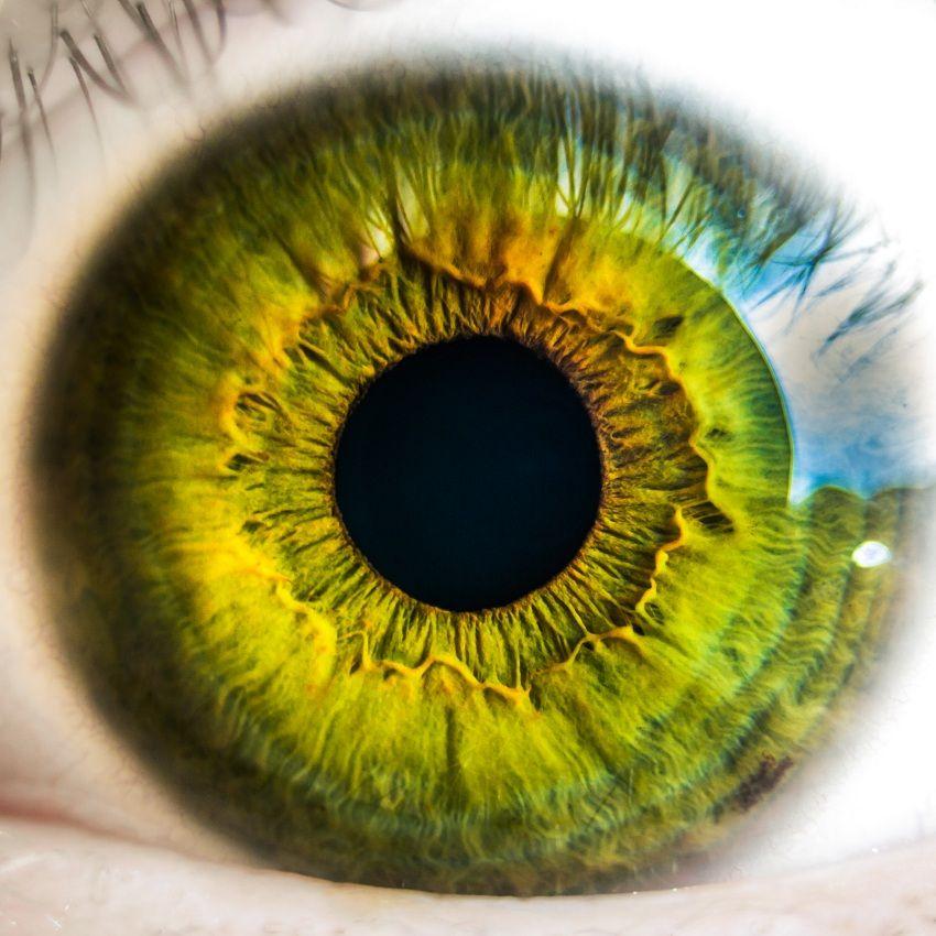 quiz-eye-screen