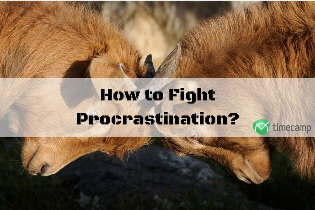 fight-procrastination-screen