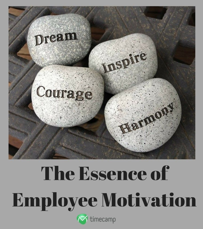 The Essence of Employee Motivation