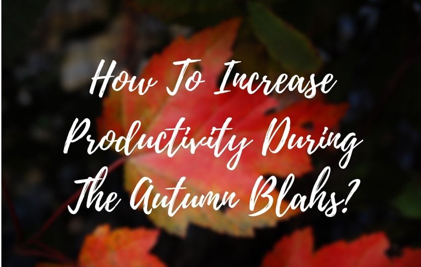 productivity during autumn blahs