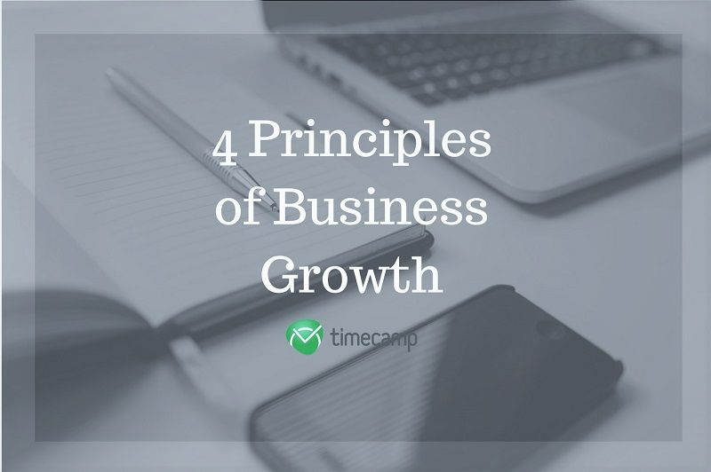 4-principles-of-business-growth