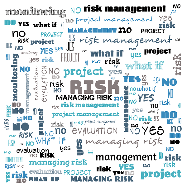 What Is Risk Management?