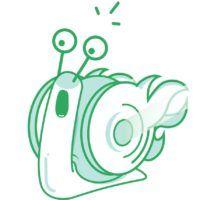 timecamp-snail